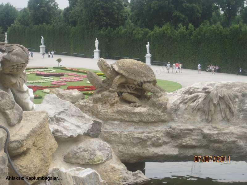 Viyana nın incisi schönbrunn sarayı